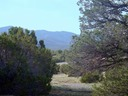 Lot 98 Phase I SPCE San Pedro Mountains